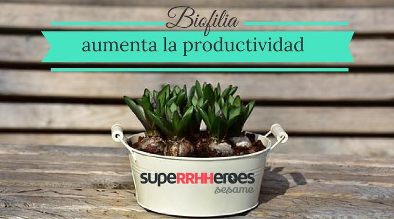 La biofilia aumenta la productividad laboral